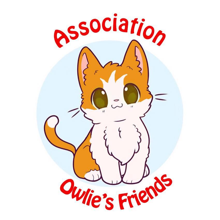 Owlie's Friends