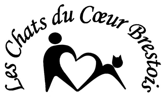 Les chats du coeur brestois