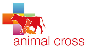 ANIMAL CROSS