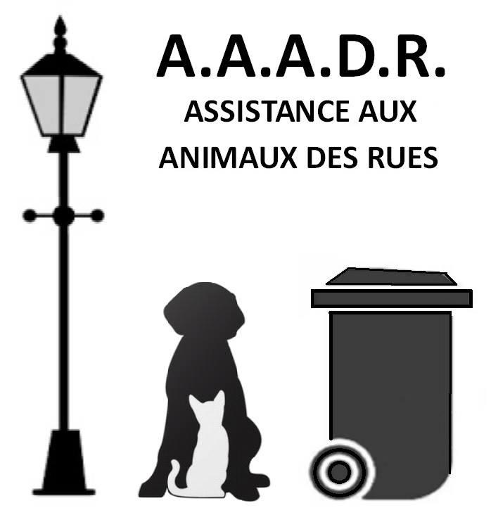 Assistance Aux Animaux Des Rues