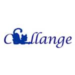 Challange ( complet )