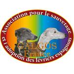 Association GALGOS FRANCE