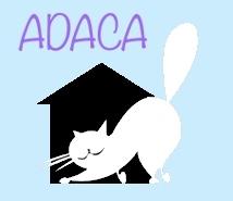A.D.A.C.A (Association des Amis des Chats Abandonnés)
