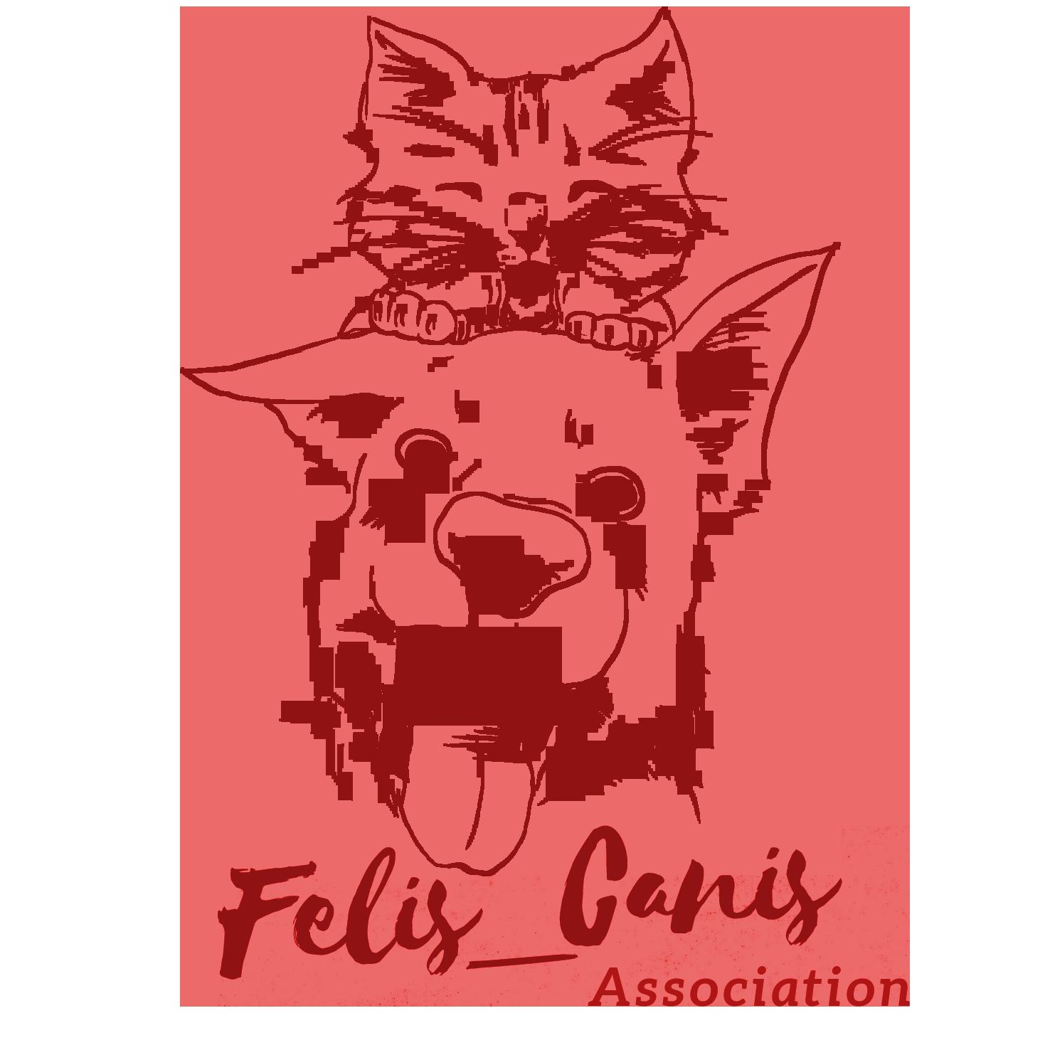 Felis_Canis Association