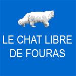 Le Chat Libre de Fouras