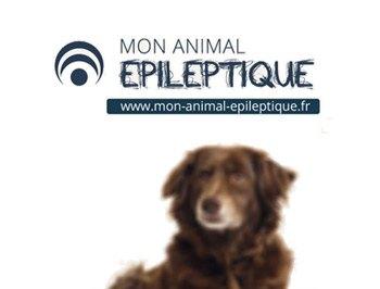 100 000 animaux en France souffrent d'épilepsie